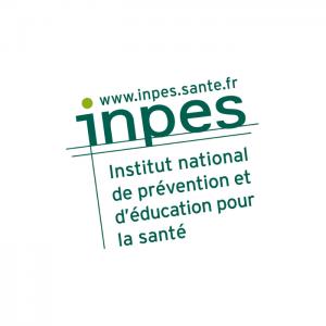 logo_ecommerce_inpes